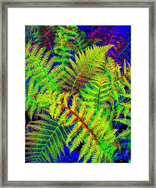 Bella Flora Framed Print