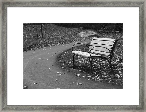 Bench On The Walk Framed Print