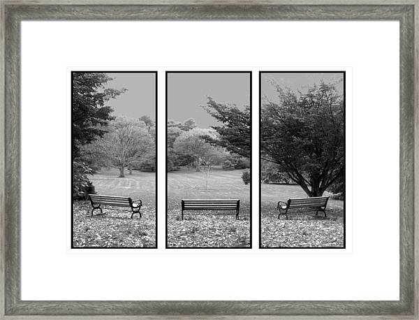 Bench View Triptic Framed Print