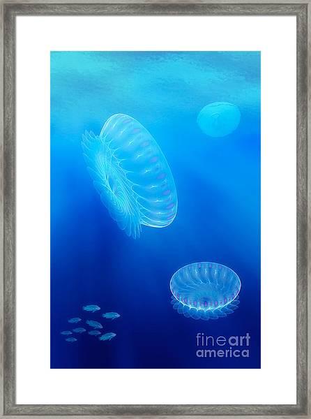 Beneath A Fractal Sea Framed Print