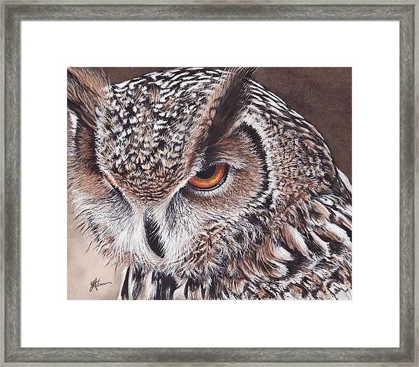Bengal Eagle Owl Framed Print