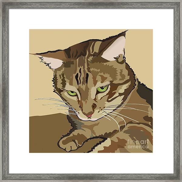 Bengal Kitty Pet Portrait Framed Print