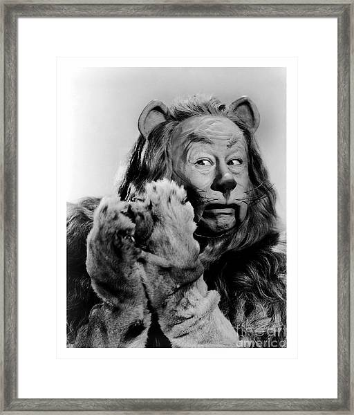 Cowardly Lion In The Wizard Of Oz Framed Print