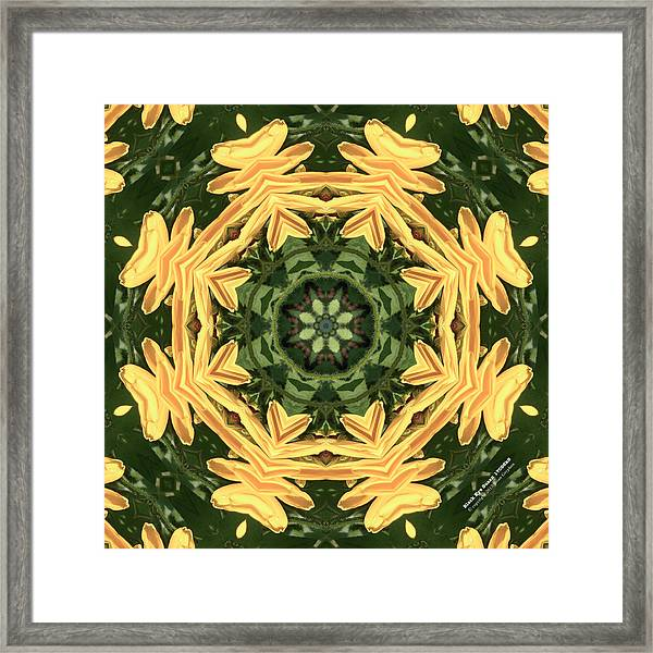 Framed Print featuring the photograph Bes17098k8 by Brian Gryphon