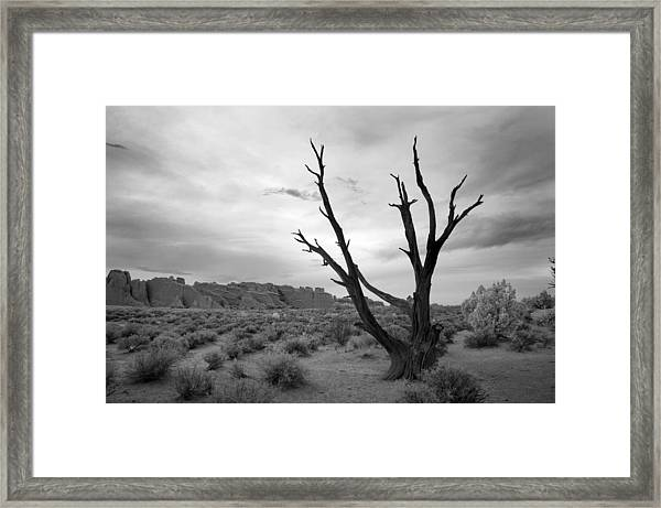 Better Off Dead Framed Print