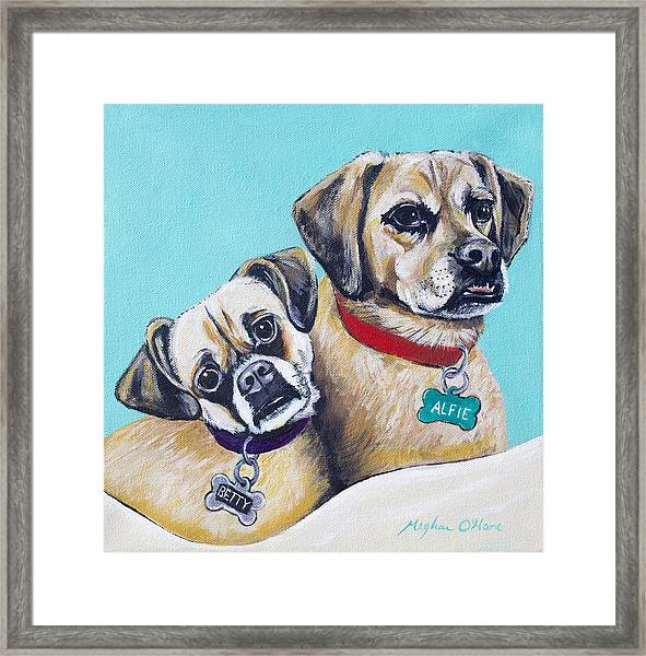 Betty And Alfie Framed Print