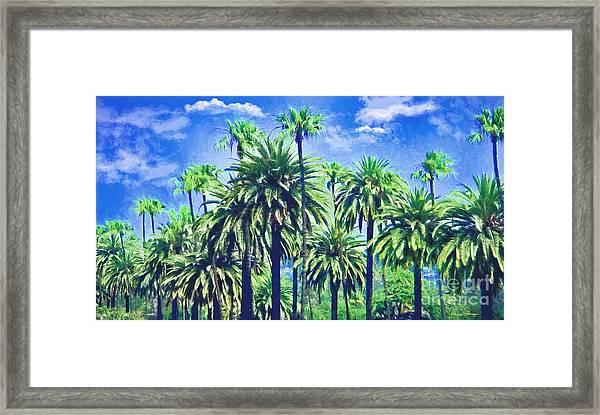 Beverly Hills Palms Framed Print