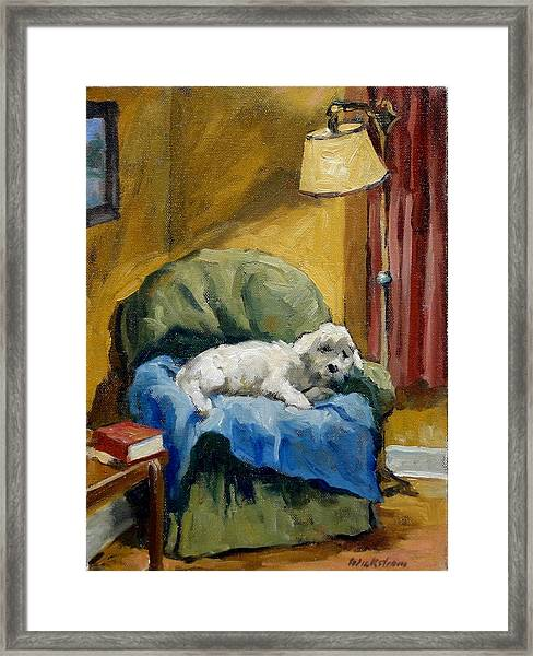 Bichon Frise On Chair Framed Print