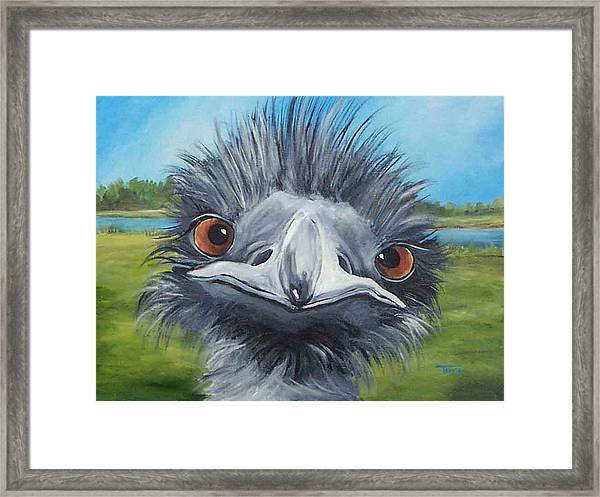 Big Bird - 2007 Framed Print