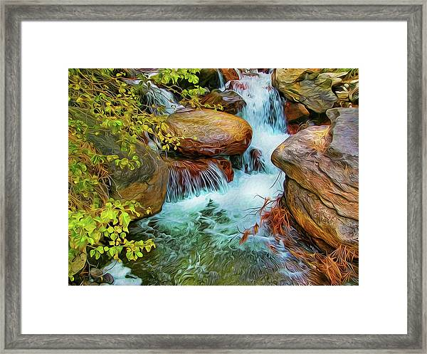 Big Pine Creek Framed Print