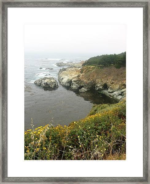 Big Sur Framed Print by Halle Treanor