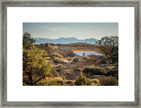 Bighorn Sheep And Mesa Arch Framed Print