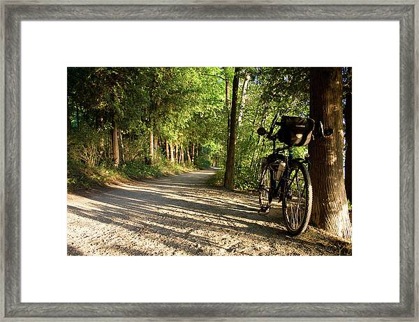 Framed Print featuring the photograph Bike Rest by Dylan Punke