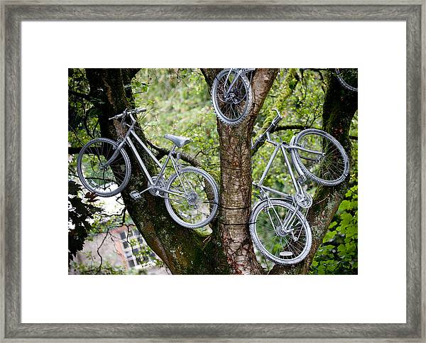 Bikes In A Tree Framed Print
