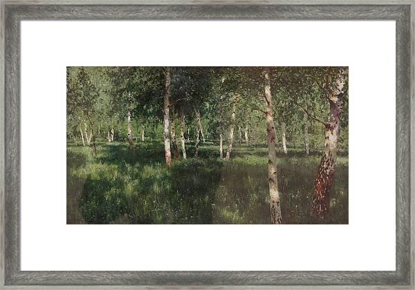 Birch Grove Framed Print by Isaac Levitan