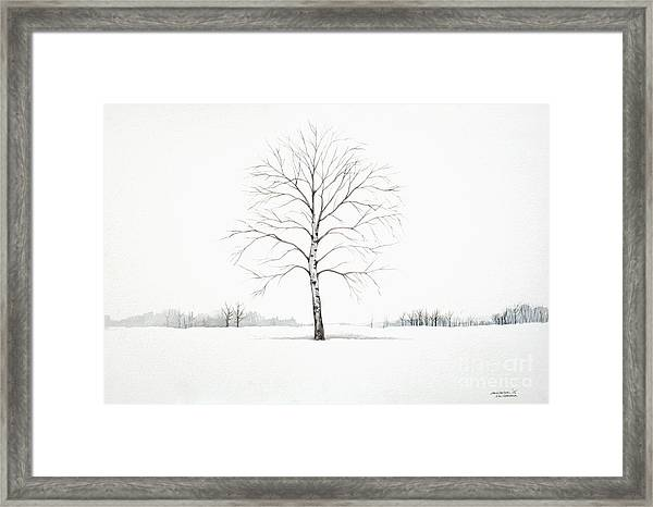 Birch Tree Upon The Winter Plain Framed Print