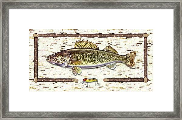 Birch Walleye Framed Print