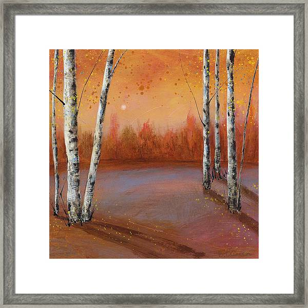 Birches In The Fall Framed Print