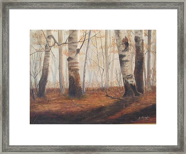 Framed Print featuring the painting Birches by Jan Byington