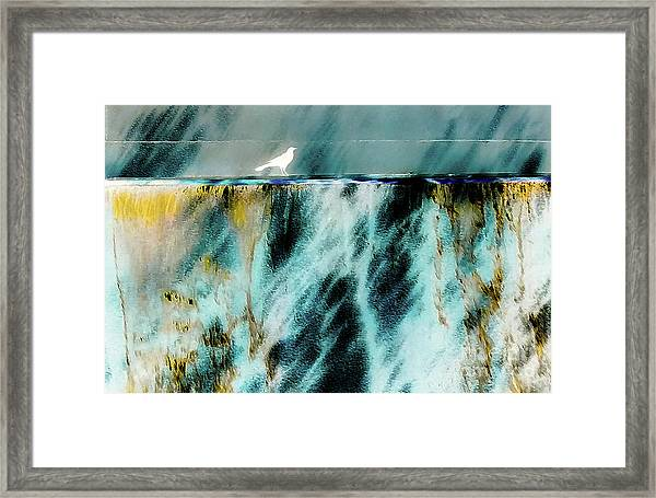 Bird At The Abstract Fountain Framed Print