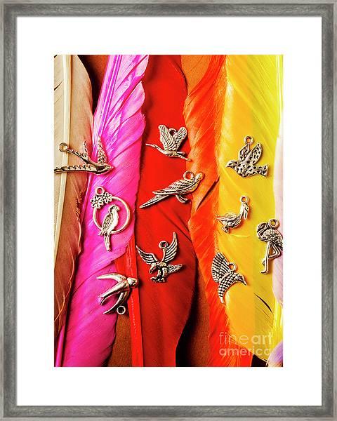 Bird Icons And Rainbow Feathers Framed Print