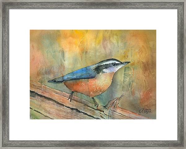 Bird On A Log Framed Print
