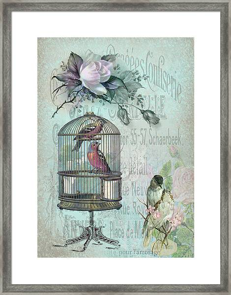 Birdcage Blossom Framed Print