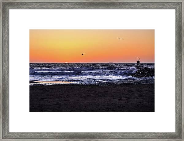 Birds At Sunrise Framed Print
