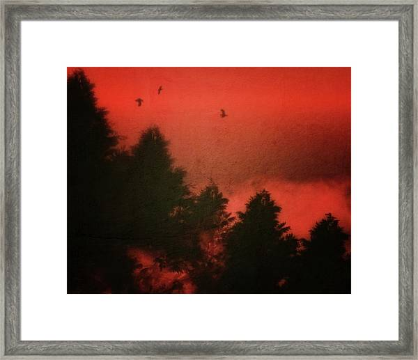 Framed Print featuring the photograph Birds In A Red Sky by Jan Keteleer