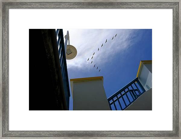 Birds In Formation Over The Boardwalk At Daytona Beach Florida Framed Print
