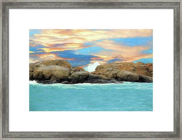 Birds On Ocean Rocks Framed Print
