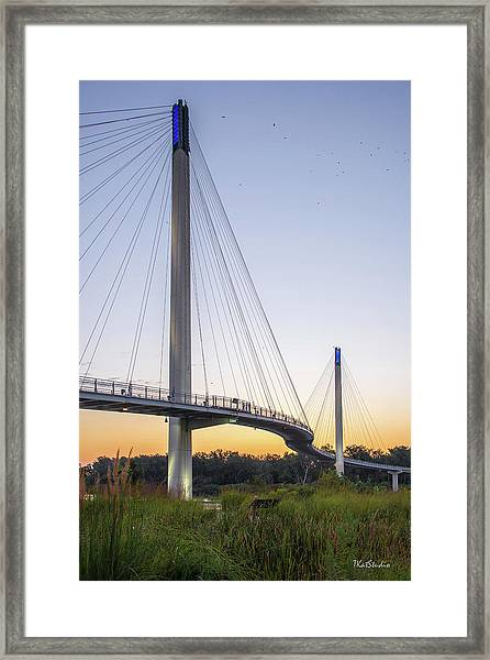 Birds Soaring Over Bob Kerry Bridge Framed Print