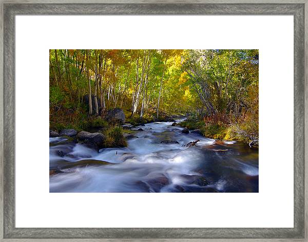 Bishop Creek In Fall Eastern Sierra Photograph Framed Print