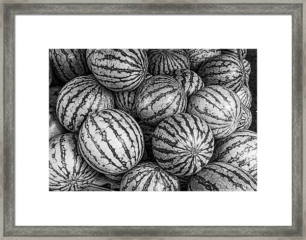 Black And White Mellons Framed Print