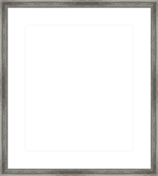 Black Excellence II Framed Print