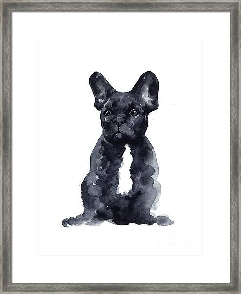 Black French Bulldog Watercolor Poster Framed Print