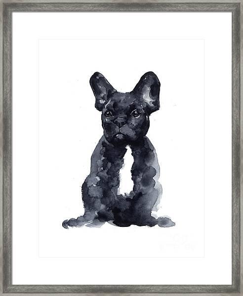 Black French Bulldog Watercolor Poster Framed Print