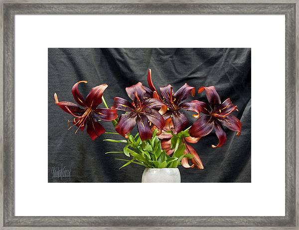 Black Lilies Framed Print