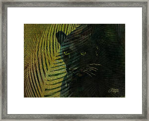 Black Panther Framed Print