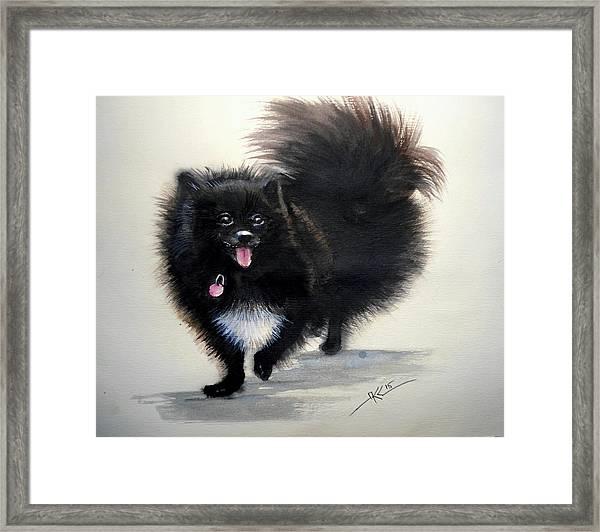 Framed Print featuring the painting Black Pomeranian Dog 3 by Katerina Kovatcheva