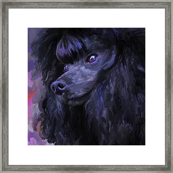 Black Poodle - Square Framed Print