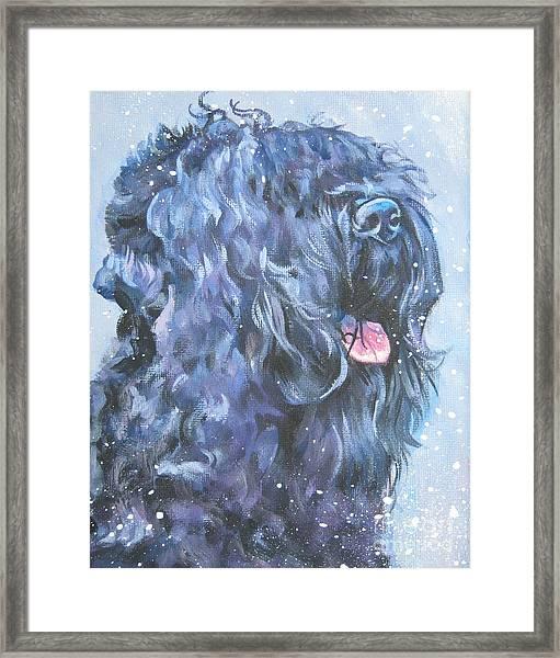 Black Russian Terrier In Snow Framed Print