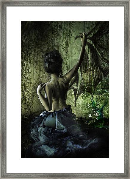 Black Wing Framed Print