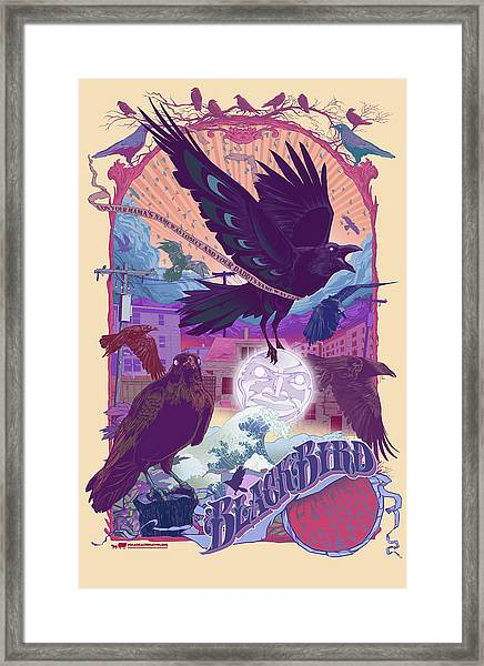 Blackbird 2 Framed Print