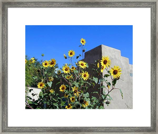 Framed Print featuring the photograph Blackeyed Susans And Adobe by Joseph R Luciano