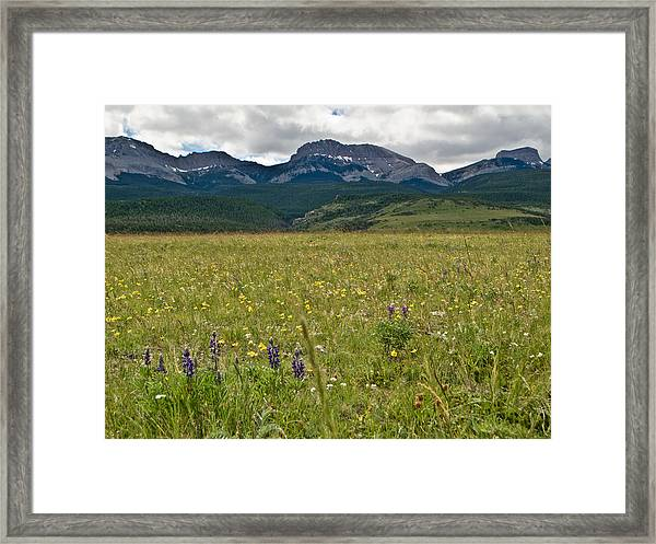 Blackleaf Canyon Framed Print
