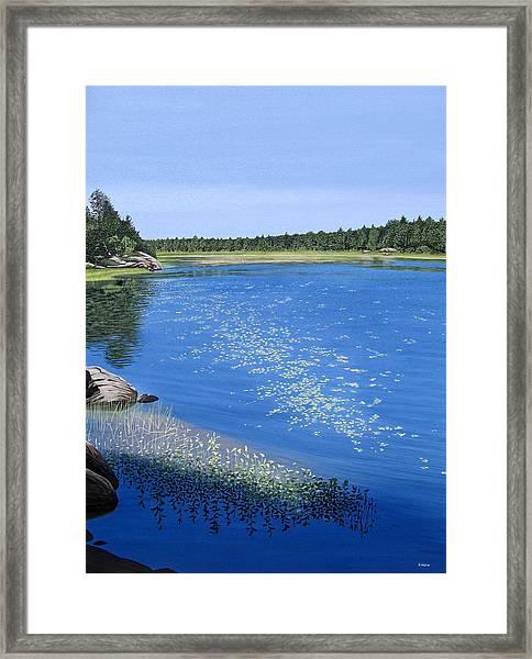 Blackstone Bog Framed Print