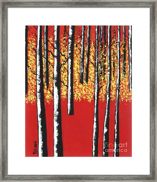 Blazing Birches Framed Print