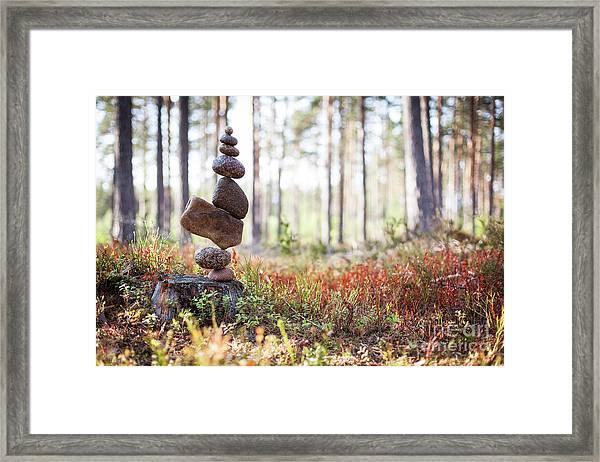 Blomma Framed Print