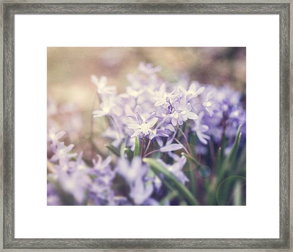 Bloom Framed Print by Lisa Russo
